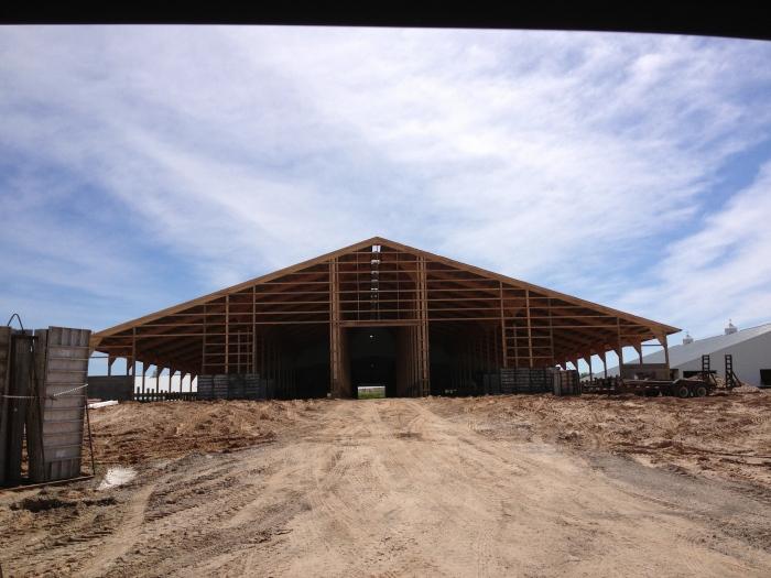 barnbuilding11